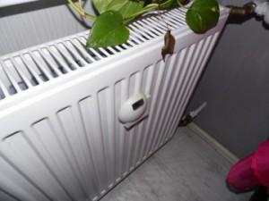 теплосчетчик на радиаторе отопления